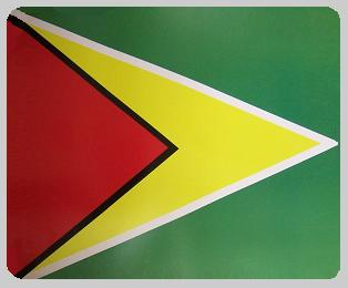 Guyana blanket international flag 50 by 60 inches 100 percent fleece polyester