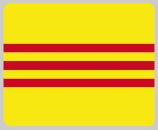 South Vietnam blanket international flag 50 by 60 inches 100 percent fleece polyester