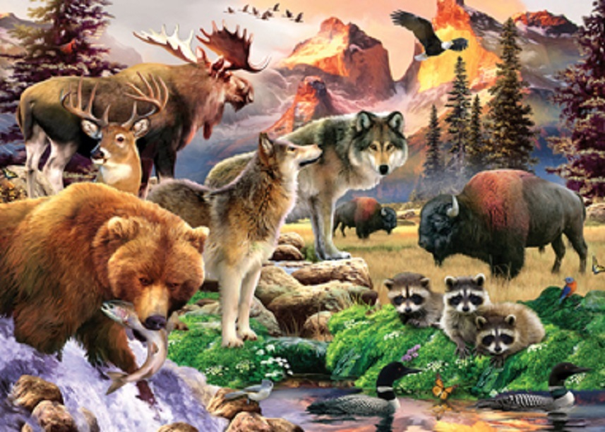 Different wild animals together - photo#2