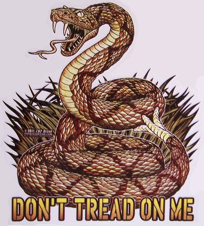 With Detailed Snake - Bumper Sticker Don/'t Tread On Me